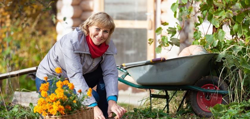 žena s kolečkem na zahradě