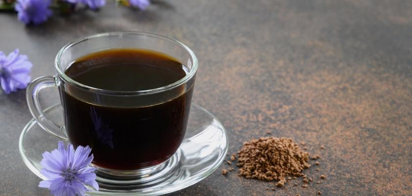 čekanková káva