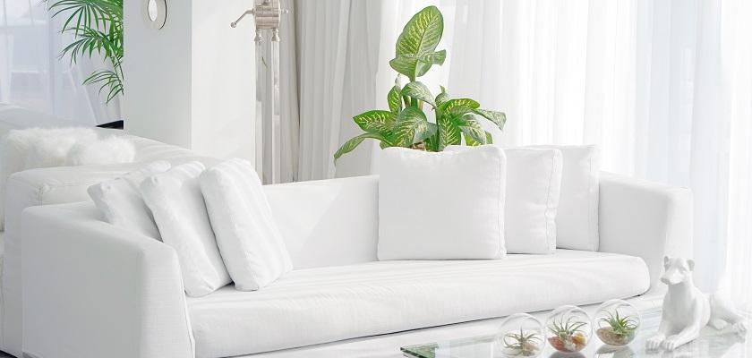 bílá sedací souprava s květinou