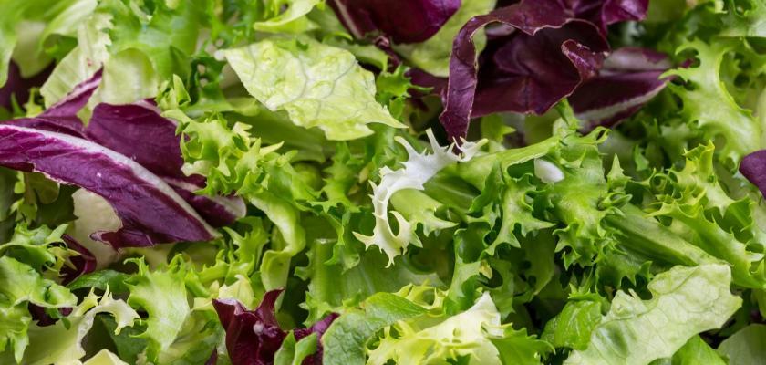 mix salátů