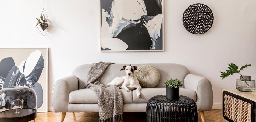 šedivý retro obývací pokoj