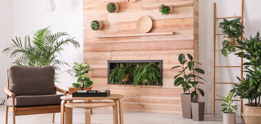 zen styl bydlení a rostliny