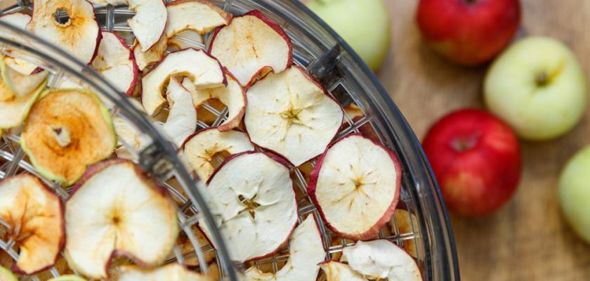 sušička na ovoce