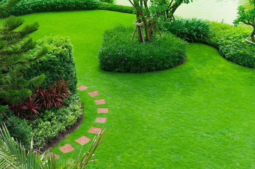 pažit na zahradě