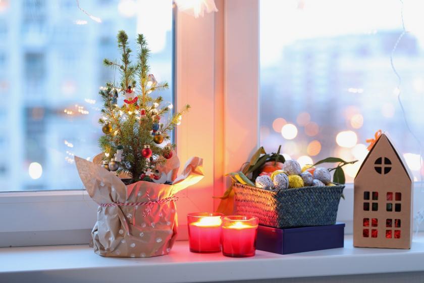 vánoční stromek v květináči