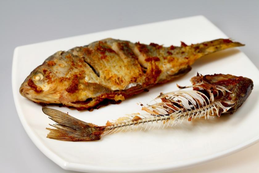 rybí kosti