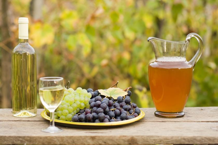 burčák a víno