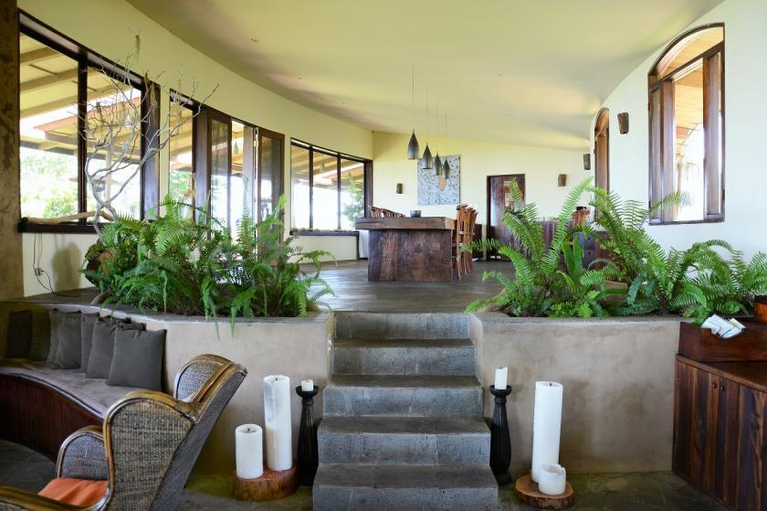 safari interiér