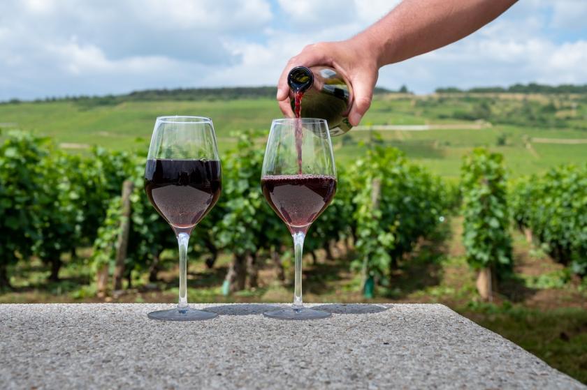 nalévání vínka
