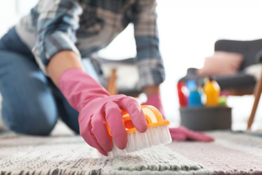 žena čisticí koberec